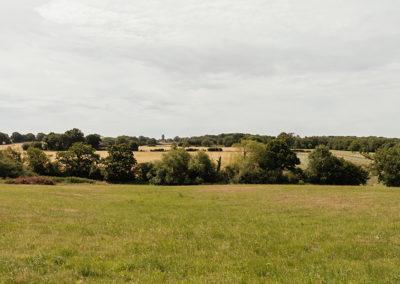 Countryside views at Crondon Park