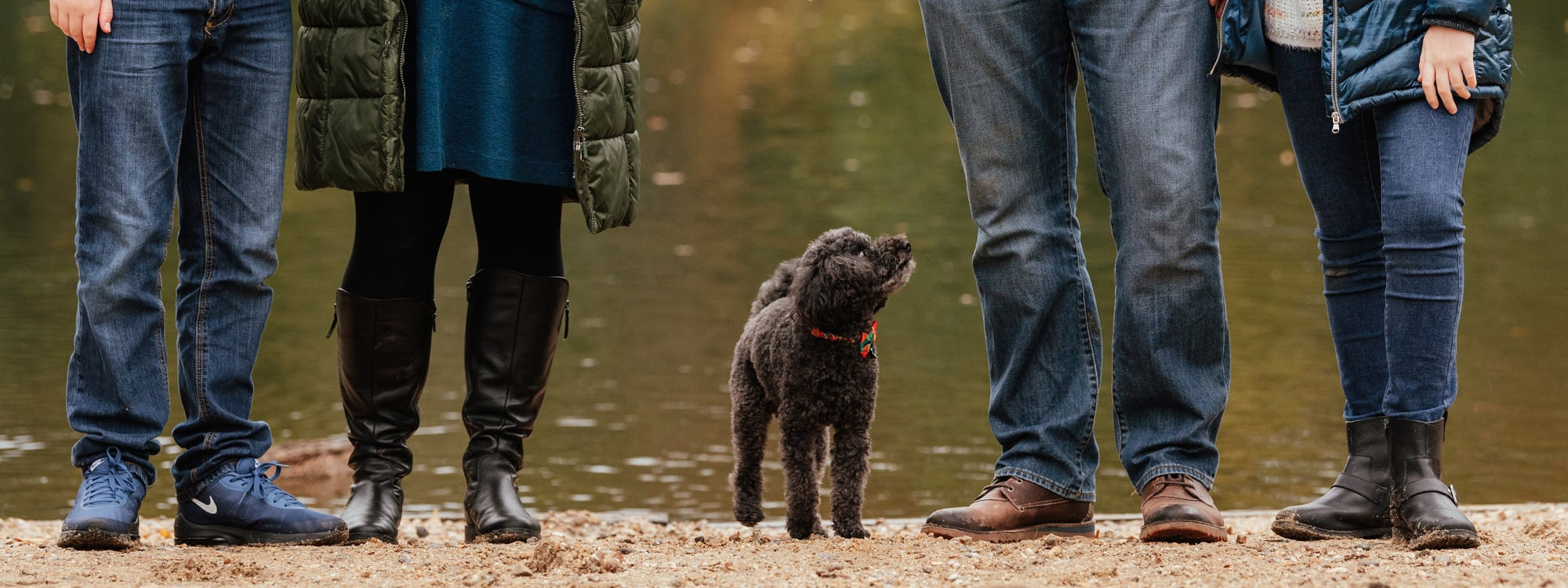 Family standing with their dog, all focus on the dog and families legs, essex dog photographer