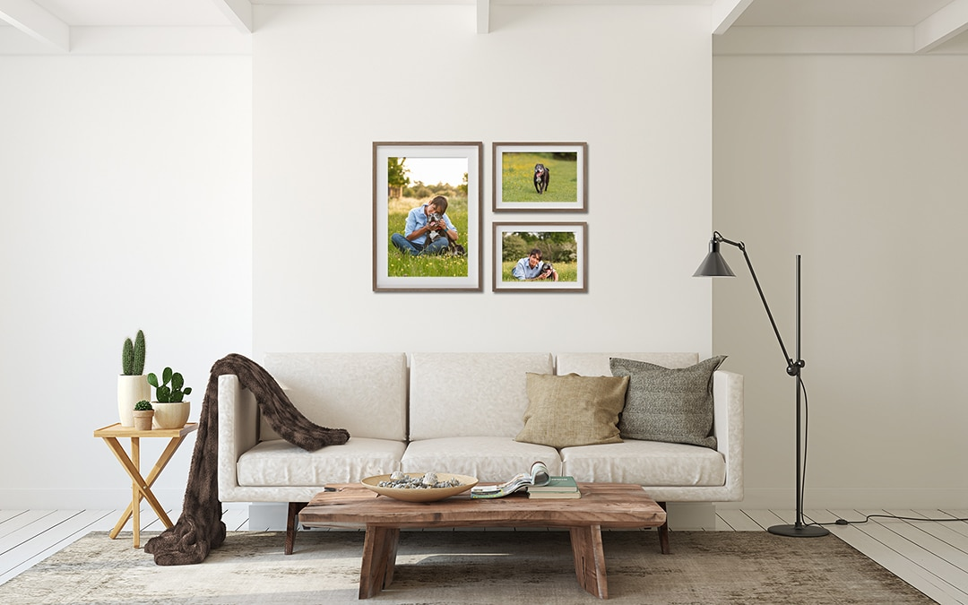 Pet Photography framed Collection of 3 framed prints, one large portrait and two smaller landscape