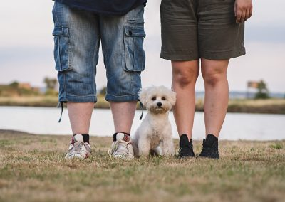 Dog sitting between owners legs in pet photo shoot harlow