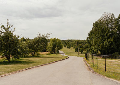 Road Leading from Crondon Park