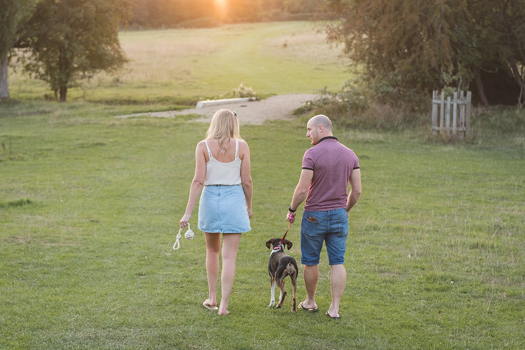 Couple with dog walk away from camera into the sunset gold hour photography